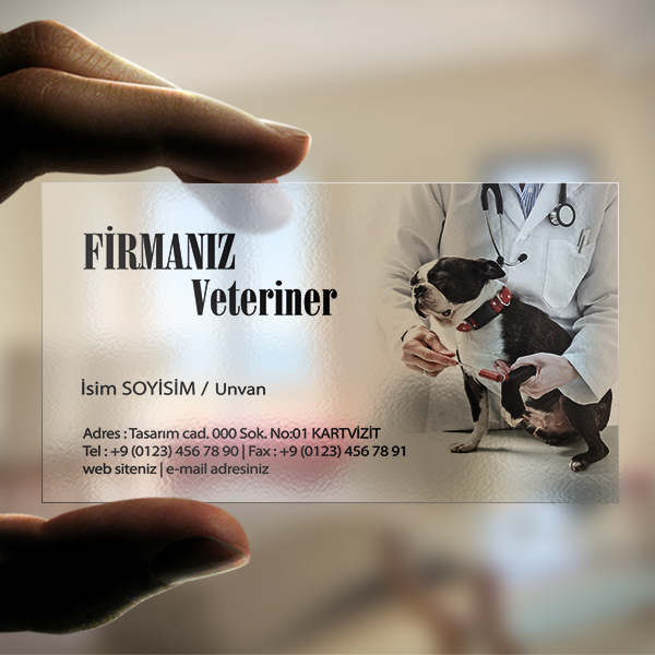 Resimli veteriner Seffaf kartvizit