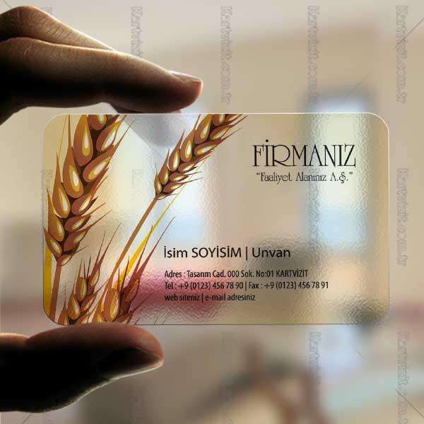 Buğday Dokunuşu
